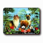 3D Lenticular Magnet - TWO DogS KD-1139-MAL