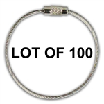 LOT of 100 Stainless Steel Screw Cable Loop Tags
