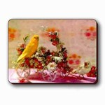 3D Lenticular Magnet - CANARY/CART W/Flowers SSP-130-MAL