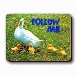 3D Lenticular Magnet - DUCKS FOLLOW ME SSP-396-MAL