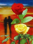 3D Lenticular POSTCARD - ROSES & LoveRS