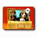 3D Lenticular Magnet - THREE DogS IN BASKET TP-201-MAL