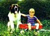 3D Lenticular ST.BERNHARD and BOY