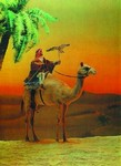 "3D Lenticular Picture / Poster 10.5"" X 13.5"" - MAN RIDE A CAMEL"