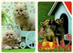 3D Lenticular Dog and CatS POSTCARD